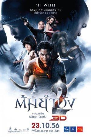 Честь дракона 2 [2013]